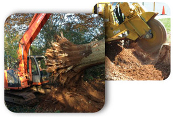 Stump Removal CT, Stump Removal Services CT, Property Clearing Services CT, Wood Chipping CT